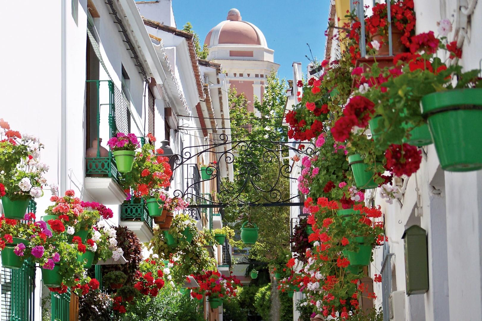 Estepona w Hiszpanii nieruchomości