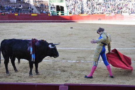 Walka byków w Hiszpanii na Plaza de torros